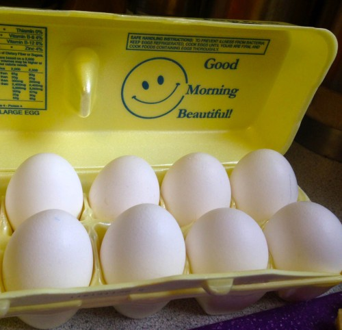 The Confusing World of Egg Marketing | real food. home made.